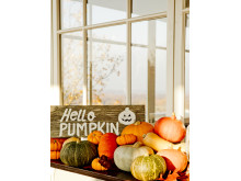 TheLodge_Autumn_Pumkin_High