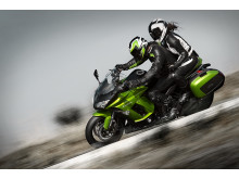 Kawasaki Z1000ZX Actionbild