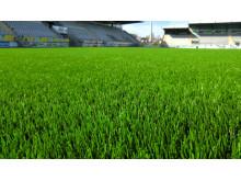 Saltex artificial grass - Elisa Stadion