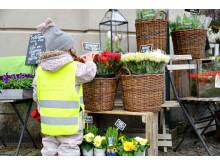 Blomsteraffären kan vara en spännande plats för ett litet barn.