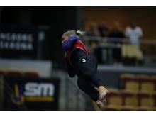 SM-kval i truppgymnastik 2018