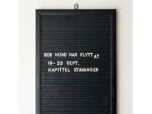 Bob Hund Kapitel Stavanger