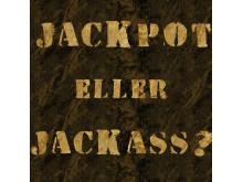 Jackpott eller jackass - vilken spelartyp är du?