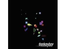 donkeyboy albumcover Lost