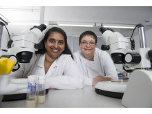 Dr Tora Smulders-Srinivasan and Dr Amanda Jones
