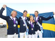 Sveriges VM-silverlag 2018