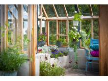Fasta odlingsbäddar i cederträväxthuset