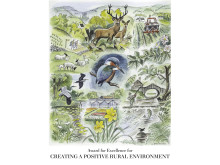 Anders Wall Environment Award, diplom