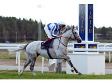 Thundering Blue vinner Stockholm Cup 2018