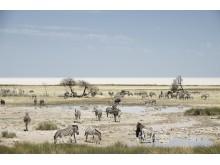 CS-291116-namibia_rx10-130