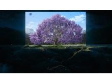 739671-2_4K25p_Stereo_Bravia-Window-Into-Daytime_60_EN_v1.10_00_48_00.Still008