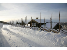 Hytte med skigard