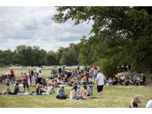 Picknick på Strömsholm