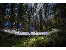 Cykel i Trysil