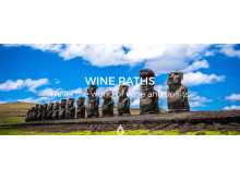 Chile FACEBOOK COVER WINE PATHS