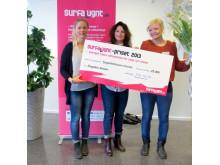 Ängdala Skolor från Vellinge kommun vinner Surfa Lugnt-priset 2013