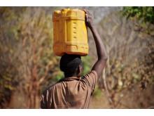 Florida Sikufa bär hem vatten, världens tuffaste jobb