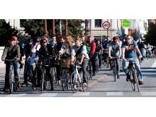 Cyklister_Köpenhamn