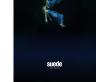 Suede_nightthoughts