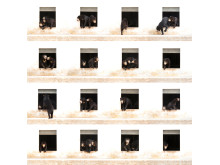 ® Alexandra Cearns, Australia, Entry, Open, Enhanced, 2017 Sony World Photography Awards