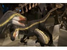 Nya modeller - Velociraptor