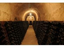 Palmer cellars 6