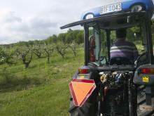 Äppelblomssafari på Kivikås