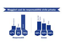 """Grafica informativa """"Maggiori casi di responsabilità civile privata"""""""