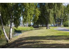 Gröna områden i Kvillebäcken