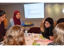 Equalizer - jämställda platser workshop