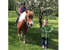 Horse Ride of Hope