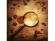 Mord i Kirkeruinen