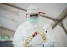 En labtekniker med ett blodprov från ett misstänkt ebolafall på ett ebolacenter i Guinea. Foto: Sylvain Charkaoui / Läkare Utan Gränser.