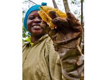 Biodling - en väg ut ur fattigdom