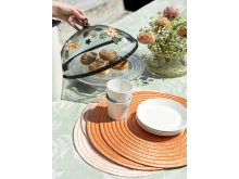 cake cover place mat summer cloth peva fern