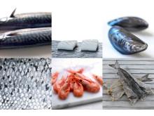 Collage av norsk sjømat