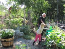 Lasse Ullvik - Allt om Trädgård