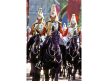Household Cavalry, London #7