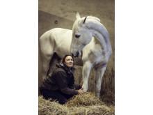 Swedish Select Horse Sales