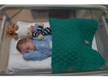 Baby Edward 2