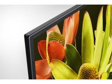XF83 4K HDR TV