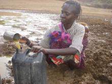Bilder från torkans Kenya. Mary Ngoleyang