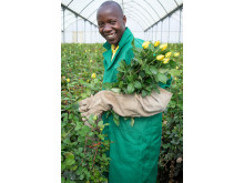 Ellias Walekhwa, rosearbeider, Kenya