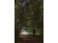 Primus Park