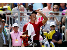 Tiger Woods er klar favorit til at vinde Arnold Palmer Invitational.