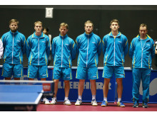 VM-laget herrar 2014