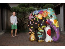 Elephant Parade national tour: First elephant completed