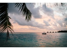 Alphaddicted_Malediven_04