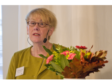 Åsa-Britt Karlsson, Miljödepartementet
