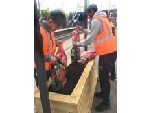 Flitwick gardening 1